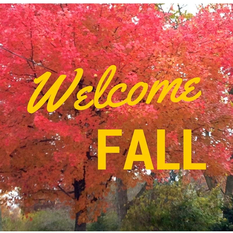 R. Poust Heating offers Fall Inspections